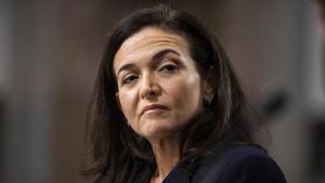 Facebooks operativa chef Sheryl Sandberg under ett förhör i senaten om utländskt inflytande via sociala medier.