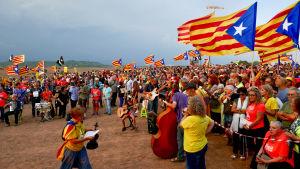 Kaksi katalonialaisnaista ponnistelee miestensä vapauttamiseksi espanjalaisista vankiloista.