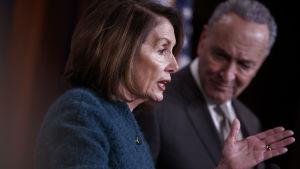 Nancy Pelosi blir snart talman i kongressen medan hennes partikamrat Chuck Schumer är demokratisk minoritetsledare i senaten