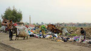 Två pojkar samlar plastskräp i Mosul