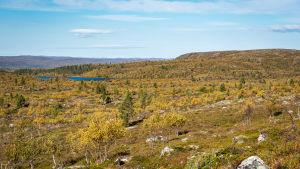 Ett kargt fjällandskap från det lappländska gränsområdet mellan Finland och Norge.