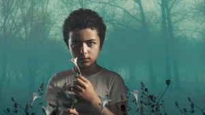 Amerikkalaisen rikosdraamasarjan toisella kaudella poliisietsivä Harry Ambrose tutkii pikkupojan tapausta.