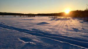 En snöig vinterdag vid Läppträsket i Karis.