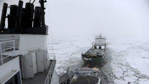 Isbrytaren Kontio bogserar ett fraktfartyg på bottenviken 2013.