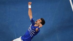 Tennisstjärnan Novak Djokovic jublar på knä med händerna i luften.