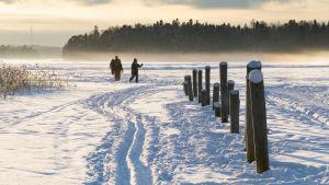 Talvinen maisema meren jäältä jossa kävelee ihmisiä.