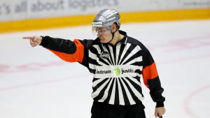 Timo Favorin.