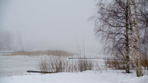 Ålandskap i vinterskrud.