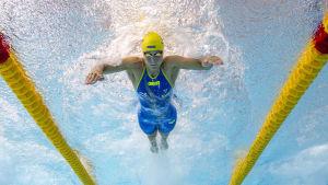 Sarah Sjöström simmar fjärilsim