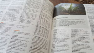 Tidningsuppslag ur Kyrkpressen med de lokala församlingarnas aktiviteter