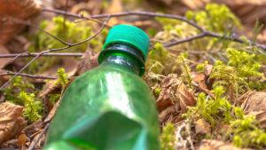 Plastflaska skräpar i naturen