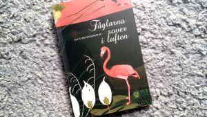"""Pärmen till Eva-Stina Byggmästars poesibok """"Fåglarna sover i luften""""."""