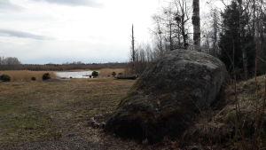 En stor sten i Djupsten i Nykarleby