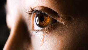 närbild på ett brunt öga som fäller en tår.