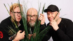 Toni Laaksonen, Juha Blomberg ja Jesse Kaikuranta kurkistavat pensaan takaa