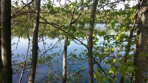 Mellan gröna strandalar skymtar en sjö med klart vatten.