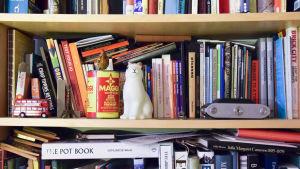 bild av böcker i en bokhylla