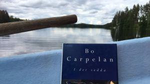 Bo Carpelanin runoteos soutuveneessä, horisontissa näkyy aavan veden takana metsänreunaa