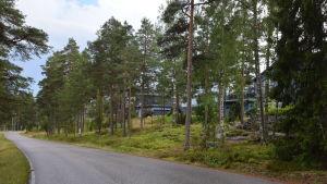 Hus längs med en väg i Störsvik i Sjundeå.