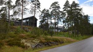 Hus längs med Störsvikvägen.