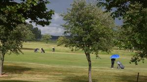 Golfare på en golfbana.