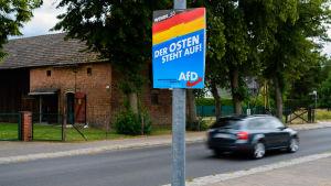 Valreklam för AfD i delstaten Brandenburg som håller delstatsval.