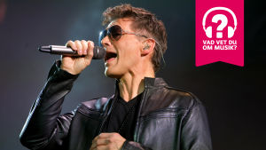 Morten Harket har solglasögon på sig och sjunger i en mikrofon.