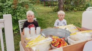 Kaksi vaaleatukkaista poikaa istuu pöydän takana puutarhassa.