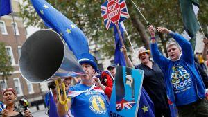 Brexitmotståndare demonstrerade utanför regeringsbyggnaderna i London på måndag kväll.