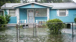 Översvämning på uppfarten av ett hem i South Carolina efter Dorian.