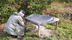 En man med grå jacka och blå skärmmössa sitter på huk vid en ställning med plasttak. I mitten under plasttaket finns ett ämbar, där nattfjärilar samlas in och observeras.