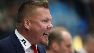 Jarno Pikkarainen, HIFK:s huvudtränare