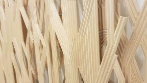 Bild på en trärelief som gestaltar vasstrån.