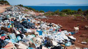 Massvis med plastskräp bredvid en väg