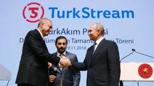 Presidenterna Erdogan och Putin skakar hand.