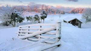 Luminen talvimaisema maaseudulla.