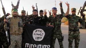 Milismän från Kataib Hizbollah visade upp segertecknet och en IS-flagga efter strider mot IS i oktober 2014.