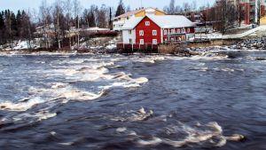 Pyhäjoen Oulaistenkoski Oulaisissa tammikuussa 2020.