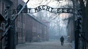 Auschwitz 27.1.2020, exakt 75 år efter att lägret befriades.