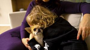 6-vuotias Kaapo-poika takaa kuvattuna, halaa koiraa