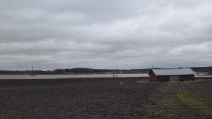 Vesi nousi pelloille Eurassa.