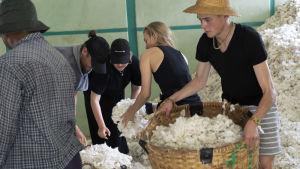 På bilden syns fem personer som står bland en massa bomull.
