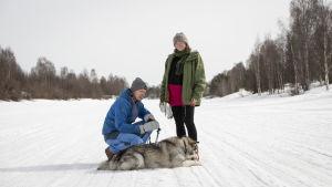 Maria Karnola, Henri Ljungkvist ja Nalle-koira joen jäällä Rovaniemellä