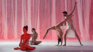 Tanssijat Kailey Kaba, Maria Tamminen, Lucie Rákosníková ja Cauê Frias teoksessa Sciamachy