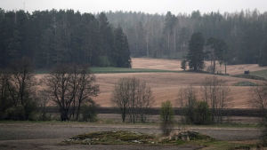 Lohjan Hyvelänjärven pellot