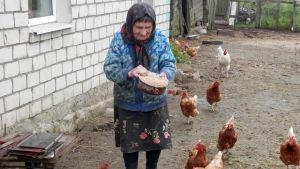 Äldre kvinna med sina höns i Vitryssland.