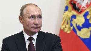 Rysslands president Vladimir Putin den 3 juni 2020.