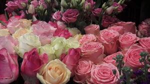 Ett fång med rosor.