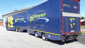 Blomstertransport från Holland anländer till Oravais.