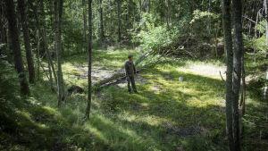 Arkeologi Teemu Väisänen metsän siimeksessä entisen asevaraston perustuksilla